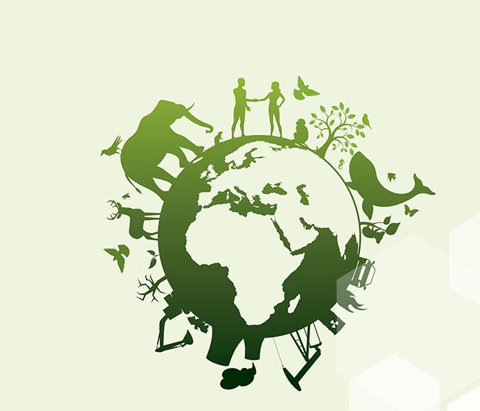 """Es """"la hora de la Naturaleza"""" en el Día Mundial del Medio Ambiente"""